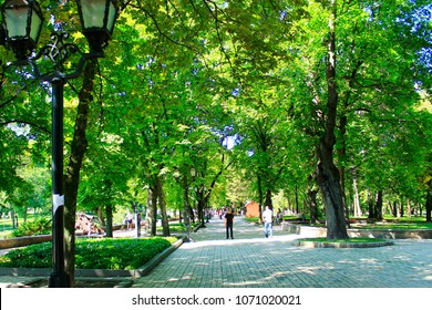 Chernihiv / Ukraine 28 August 2016: People having a rest in the city park with big trees. Couple vacation. Summer holidays. Family vacation. Travel concept. 28 August 2016 Chernihiv / Ukraine