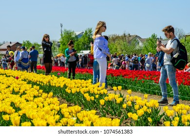 CHERNIVTSI, UKRAINE - APR 22, 2018: Festival of Tulips. Visitors to the festival are walking along the tulip field. The guy takes pictures of the girl.