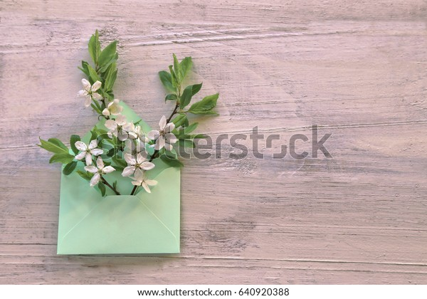 Cherries branch with green leaves in envelope on wooden