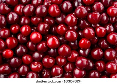 Cherry background. Cherry top view. Sour cherry flat design. Fruit macro.