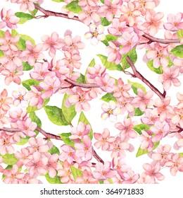 Cherry blossom (apple, sakura flowers). Floral seamless pattern. Watercolor