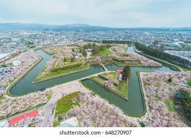 Cherry blossom full bloom at Goryokaku park in spring, Hakodate Hokkaido, Japan
