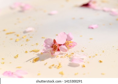 cherry blossom and gold in sparkling water background