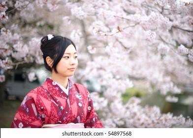 cherry blossom japanese kimono female