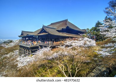 Cherry Blossom in Kiyomizudera Temple, Kyoto, Japan