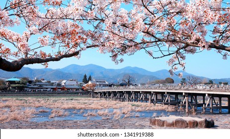 Cherry blossom and Oi River in Arashiyama, Kyoto, Japan. Japanese view.