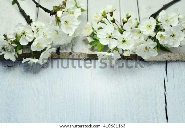 cherry blossom on the board