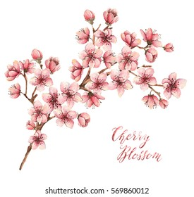 Cherry blossom, watercolor illustration,spring flowers, flowers,card for you,different elements,handmade