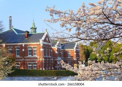 Cherry blossoms at Chidori-ga-fuchi in Tokyo