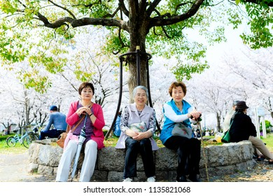 Cherry blossoms and the elderly