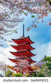 Cherry blossoms and the Five-Storied Pagoda in Miyajima