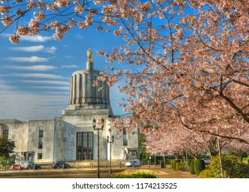 cherry blossoms in front of the Oregon State Capitol building in Salem.