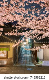 Cherry blossoms at Ishebe Alley in Higashiyama district, kyoto, Japan.