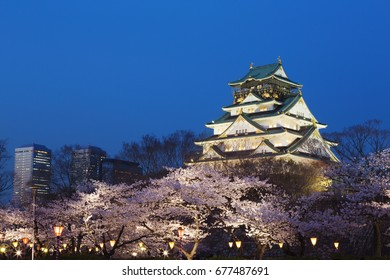 Cherry Blossoms at night in Osaka castle