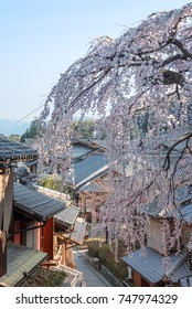 Cherry blossoms at Sannenzaka in Higashiyama district, Kyoto, Japan.