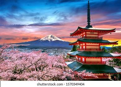 Florecen cerezos en primavera, Chureito pagoda y Fuji al atardecer en Japón.
