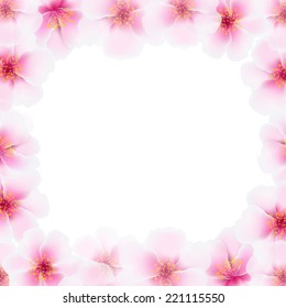 Cherry Flower Frame With Blur