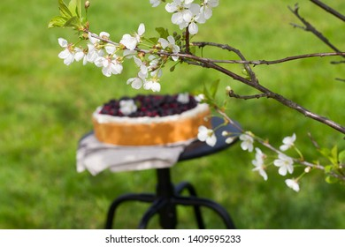 Cherry flowers in yard with berry cake as background