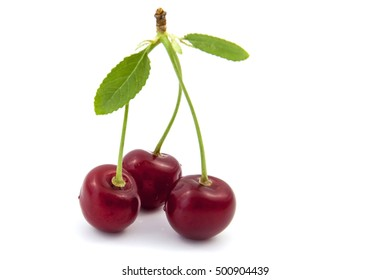 cherry on top of a white background.