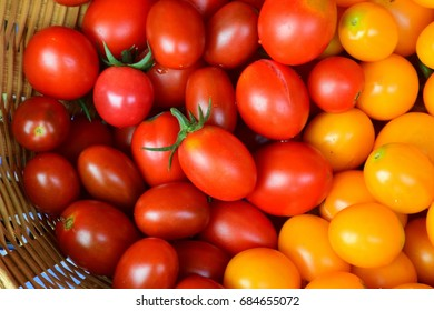 Cherry tomato red-yellow colour on basket  - Solanum lycopersicum var. cerasiforme; Fresh product from farm