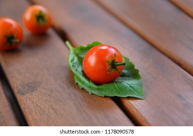 Cherry tomato sitting on a basil leaf