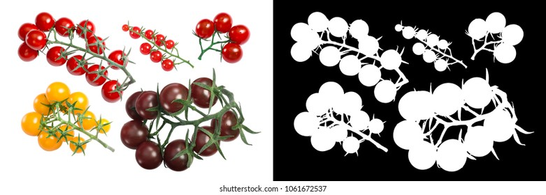 Cherry tomatoes on the vine in clusters. Top view, clipping paths
