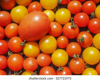 Cherry tomatoes (Solanum lycopersicum) vegetables, vegetarian food useful as a background
