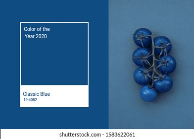 Cherry tomatoes toned in trendy Classic Blue color of the Year 2020. Vegetables minimalizm art concept. Main color trend 2020 classic blue. - Shutterstock ID 1583622061