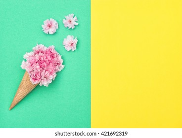 Cherry tree blossom in ice cream cone on colored background. Spring flowers. Stylish flat lay. Minimal concept. Flat lay background