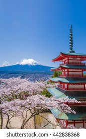 Cherry tree and the pagoda, which was Fuji and background