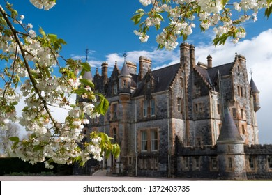 Cherry trees blossom in front of Blarney House. Blarney. Ireland. April 2019