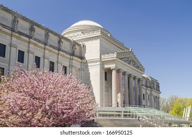 Cherry trees in full bloom in front of the Brooklyn Museum in Brooklyn, NY