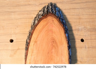Cherry wood half oval with bark edge on workbench