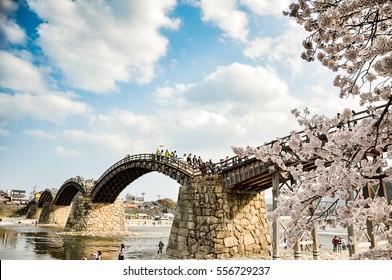 Cherry-blossoms and Kintai bridge in Iwakuni, Yamaguchi, Japan