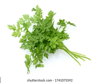 Chervil, Anthriscus cerefolium, is an important medicinal and medicinal plant. The herb is also used in the Frankfurt green sauce.