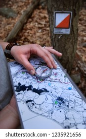 CHESHIRE, CT,USA - OCTOBER 2018: Runner reading a map with a compass during an orienteering event in a forest