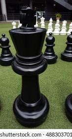 chess in grass