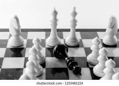 chess king and queen stand on a chessboard after victory