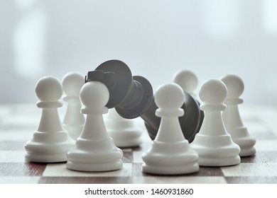 Chess photographed on a chessboard. White pawns surrounded the defeated black king. Gray background in blur.