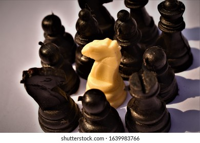 chess pieces showing single white among blacks
