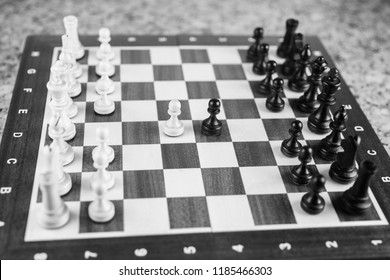 Chess. Strategy game. White and black  chess pieces on board.