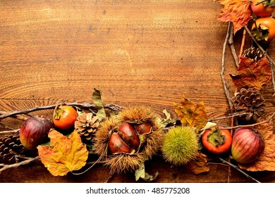 Chestnut in burrs,persimmons,figs and fall leaves.frame