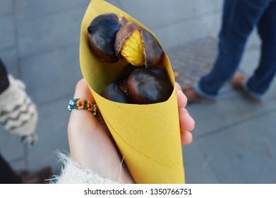 chestnut cone in hand