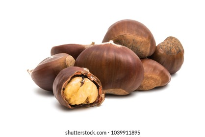 chestnut edible isolated on white background