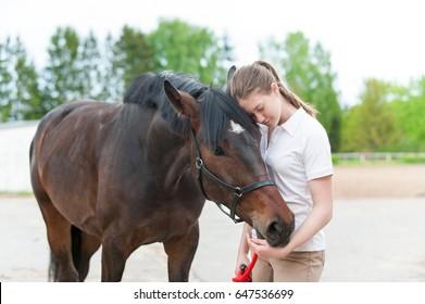 Kastanienpferd zusammen mit ihrem Lieblings-Besitzer jugendliches Mädchen. Farbiges Bild im Freien, horizontale Sommerzeit.