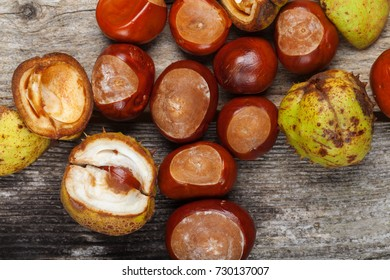 Chestnut on the vintage wooden table