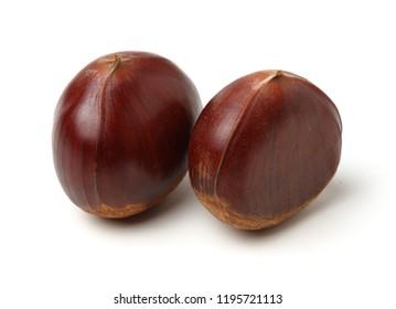 Chestnut on white.
