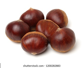Chestnut on the white background