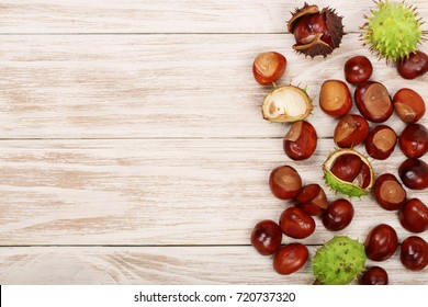 chestnut on white wooden background with copy space for your text. Top view