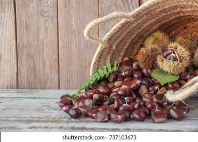 Chestnuts in the basket on the old wooden table with copy space. Raw Chestnuts for Christmas. Fresh sweet chestnut. Food background.